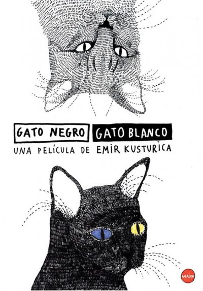 Gato Negro, Gato Blanco (Chat Noir Chat Blanc)