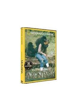 National Geographic : Gorilas De Montaña