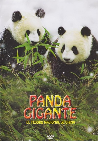 Panda Gigante : El Tesoro Nacional De China