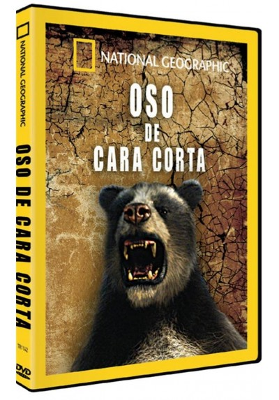 National Geographic : Oso De Cara Corta