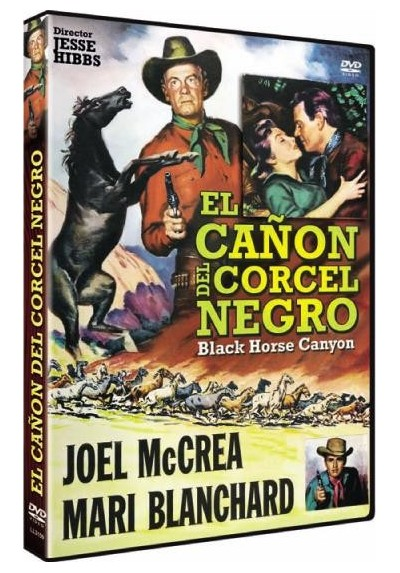 El Cañon Del Corcel Negro (Black Horse Canyon)