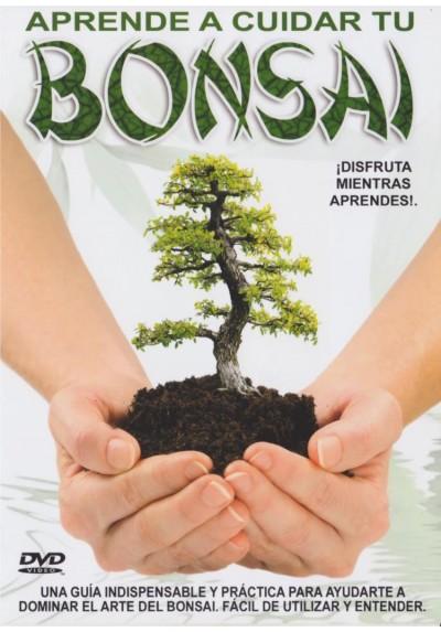 Aprende A Cuidar Tu Bonsai