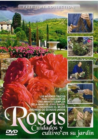 Rosas, Cuidados y cultivo en su jardín