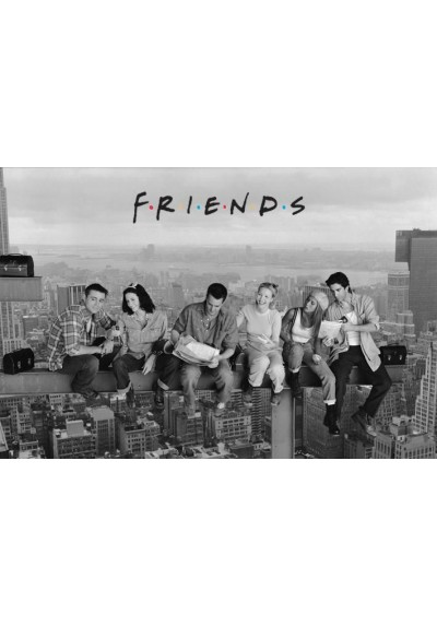 Friends en la Viga (POSTER)