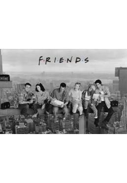 Friends en la Viga (POSTER)