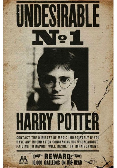 Harry Potter Nº1 (POSTER)