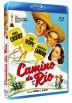Camino de Río (Blu-ray) (Bd-R) (Road to Rio)