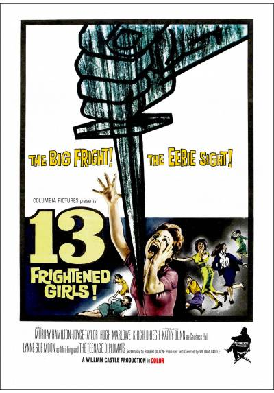 13 Chicas aterrorizadas (13 Frightened Girls) - Poster Laminado