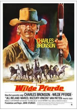 Caballos salvajes - Chino (Wilde Pferde) - Poster Laminado