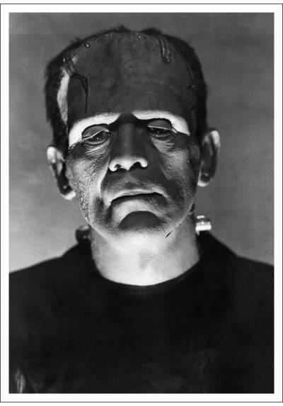 Frankenstein - Boris Karloff (POSTER 32x45)