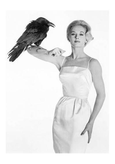 Tippi Hendren - Los Pájaros (POSTER 32x45)