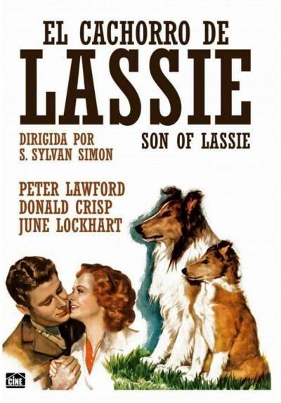 El Cachorro De Lassie (Son of Lassie)