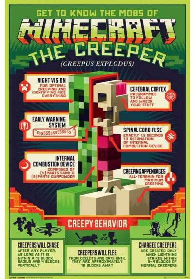 Poster Minecraft: Comportamiento Espiritoso  (Minecraft: Creeper Behaivor) (POSTER 61 x 91,5)