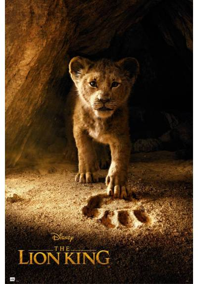 Poster El Rey Leon - Simba Real (Real Action) (POSTER 61 x 91,5)