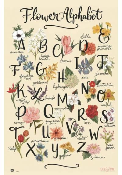 Poster Abecedario de Flores - Lily y Val (POSTER 61 x 91,5)