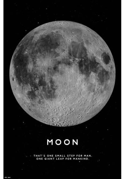 Poster La Luna (Moon) (POSTER 61 x 91,5)