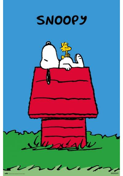 Poster Snoopy (POSTER 61 x 91,5)