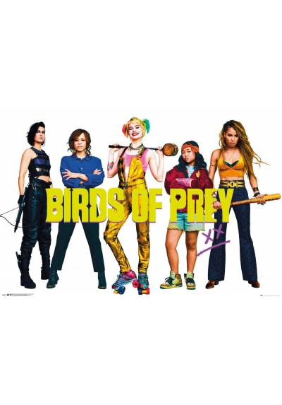 Poster Birds of Prey - Group (POSTER 91,5 x 61)