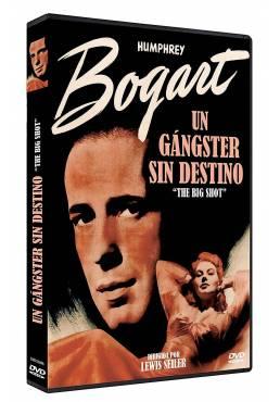 Un gangster sin destino (The Big Shot)
