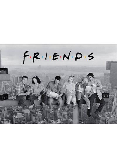 Friends En La Viga (POSTER 91.5x61)