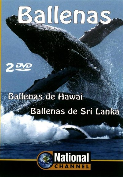 Ballenas (National Channel)